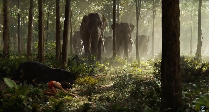 Le Livre de la jungle (Disney) le film sortie le 13 avril 2016 - Page 2 12377994_1057906710919799_3779098806542343275_o