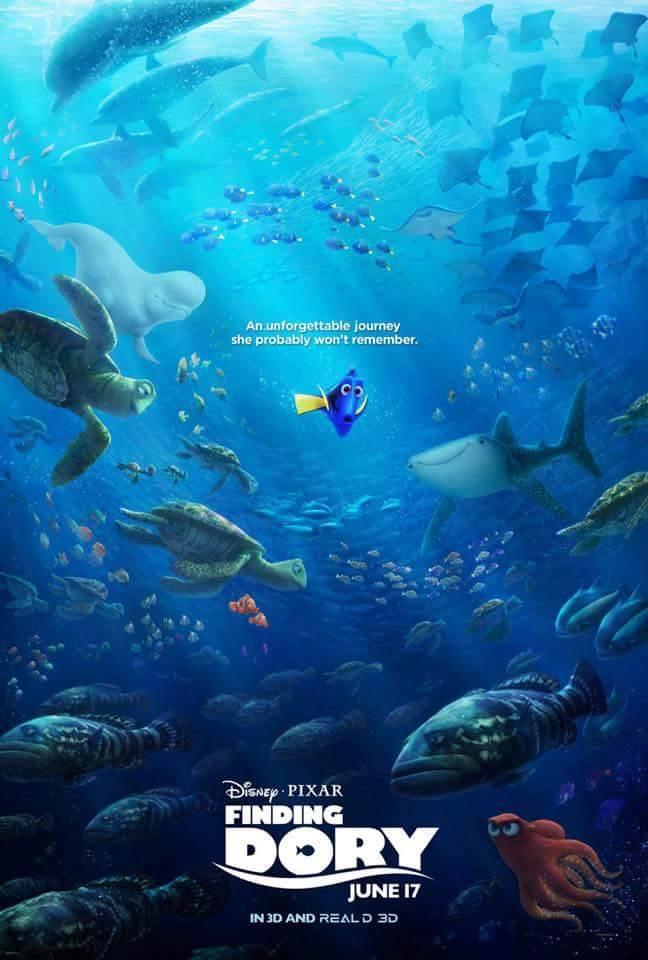 Le Monde de Dory (Disney/Pixar) repousser au 29 juin 2016 - Page 2 12803023_586284658186794_6092808252550626735_n