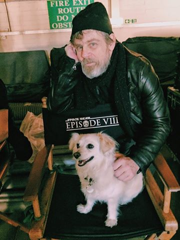 "Star Wars: Episode VIII ""The Last Jedi""  ""Star Wars : Les Derniers Jedi"" sortie 13 décembre 2017 12805904_1038702882840182_8791932895177597983_n"